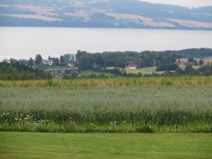 view of Lake Mjosa